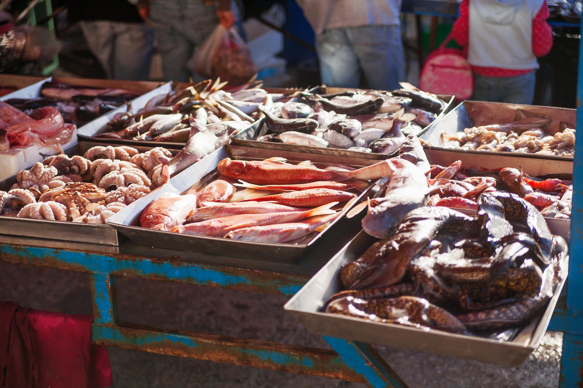 海に囲まれたマルタは新鮮な魚介類の宝庫!